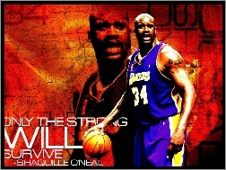 ShaQuille O\